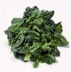 Gli-spinaci-meglio-crudi